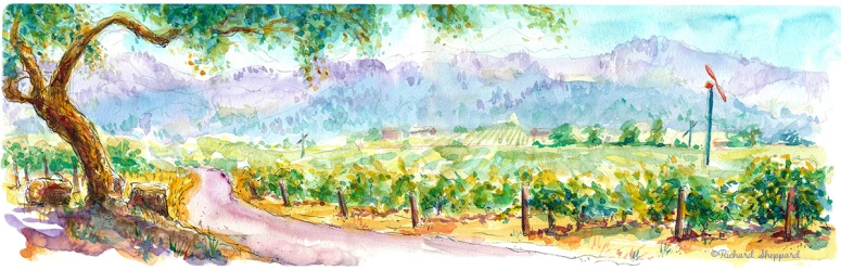 Monetlena vineyards rgb (1)